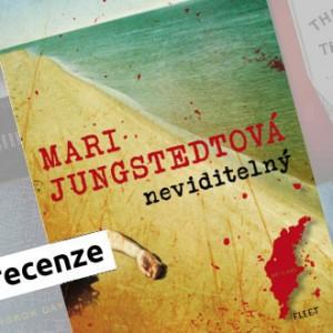Recenze e-knihy Neviditelný - Mari Jungstedtová