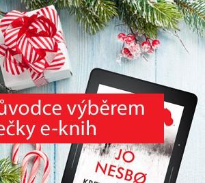 Průvodce výběrem čtečky e-knih nejen pod stromeček
